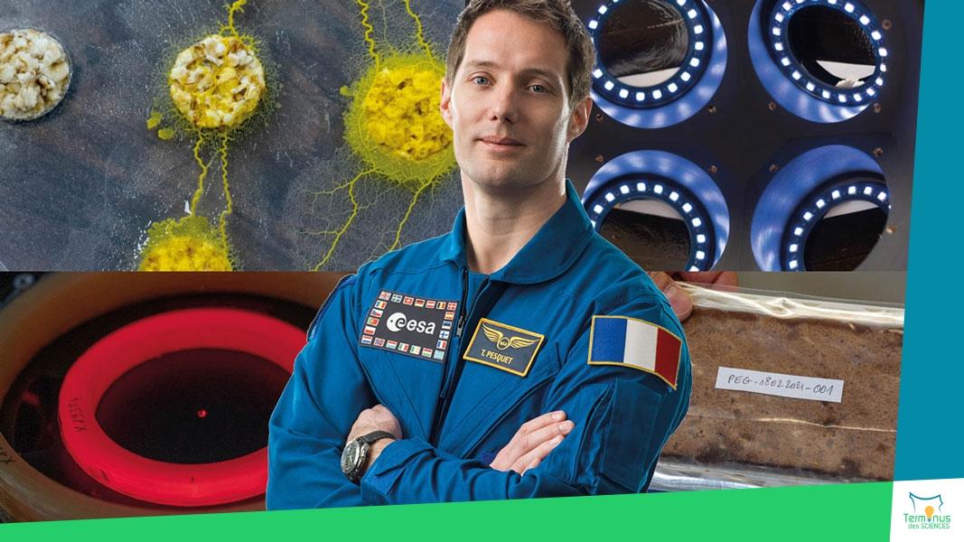 Read more about the article [De retour sur l'ISS, Thomas Pesquet étudiera les blobs]