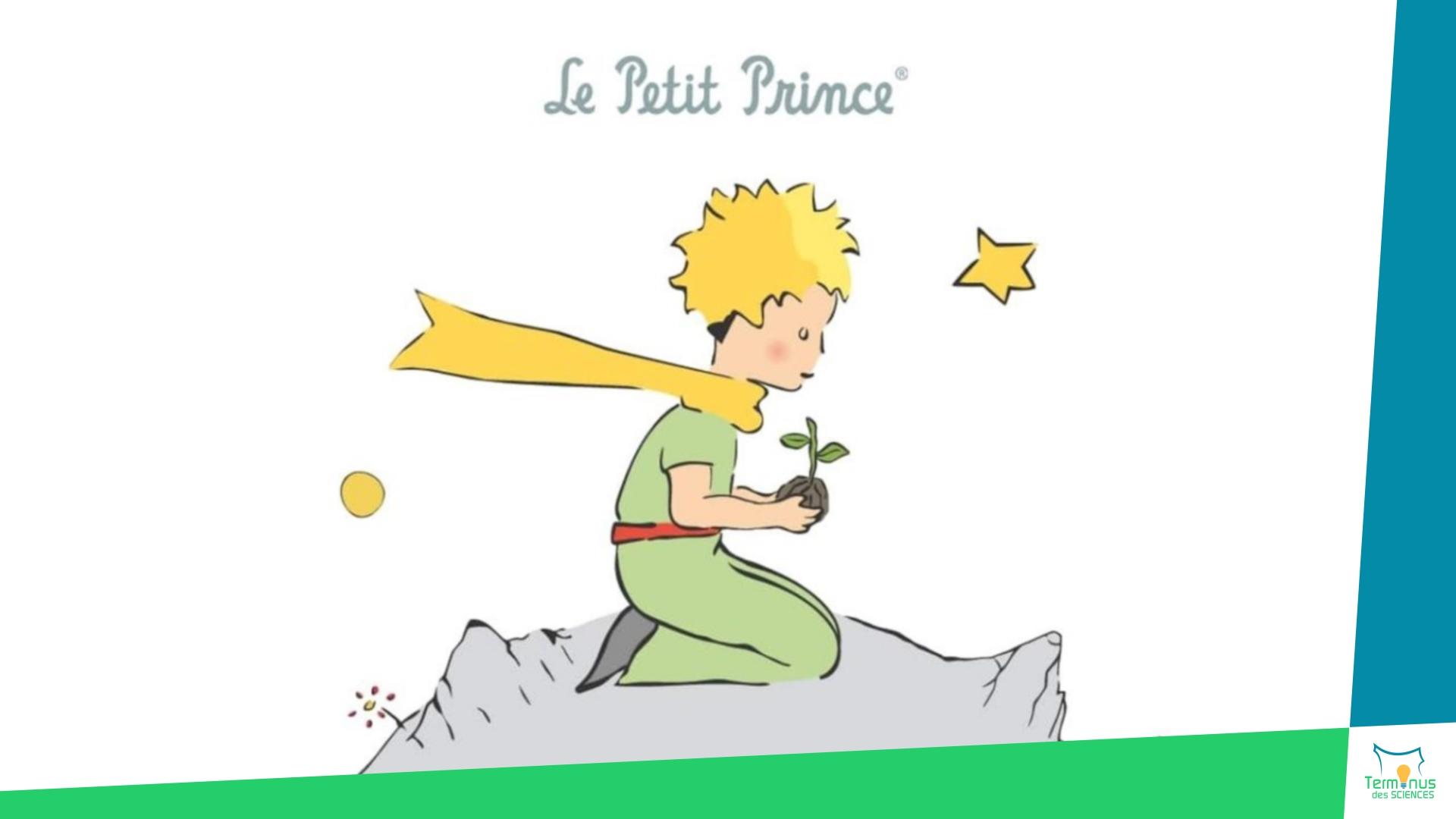 Read more about the article [Une histoire de Petit Prince… ou plutôt de Saint Exupéry]